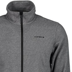 ICEPEAK Browns - Men's Full zip fleece - Gray