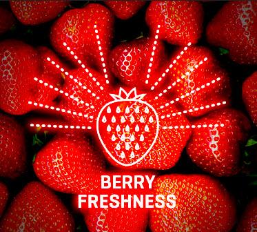 WDX berry freshness